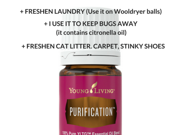 Purification ; Young Living's Blend